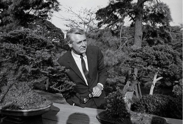 Cary Grant with bonsai trees