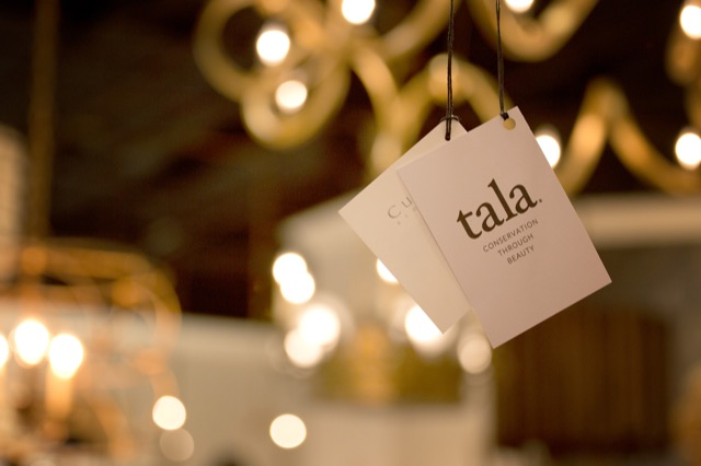 Currey & Company Tala Bulb Program